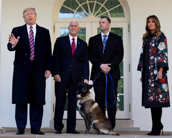 Trump decorates military dog wounded in Al-Baghdadi operation