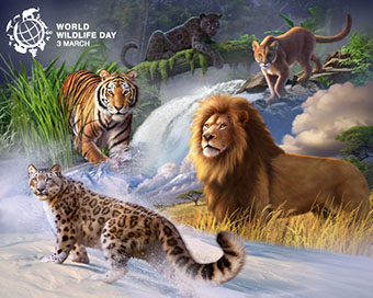 World Wildlife Day: PM, VP stress on protection of animals